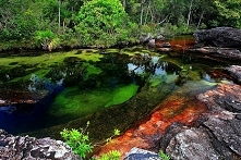 Rzeka Caño Cristales w Kolu...