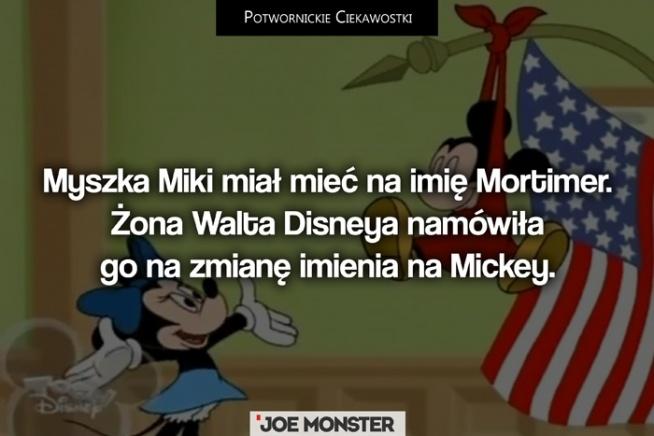 """Według Lilian imię """"Mortimer"""" brzmiało zbyt dziewczęco, a Miki miał przecież zabiegać o rękę Mini. Walt Disney przyznał swojej żonie rację, ale z imienia Mortimer do końca nie zrezygnował. Konkurentem Mikiego w walce o względy myszki Mini jest postać o imieniu Mortimer właśnie."""