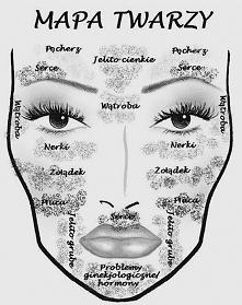 Mapa zaczerpnięta z internetu, opisująca wpływ zaburzeń organów na występowanie pryszczy odpowiednich partii twarzy. Podobno opracowana przez specjalistów.