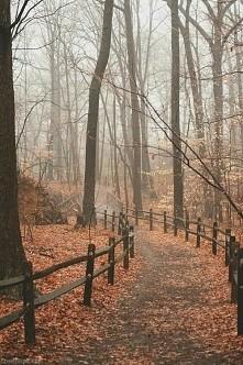 Tapeta idealna ta jesień ♥