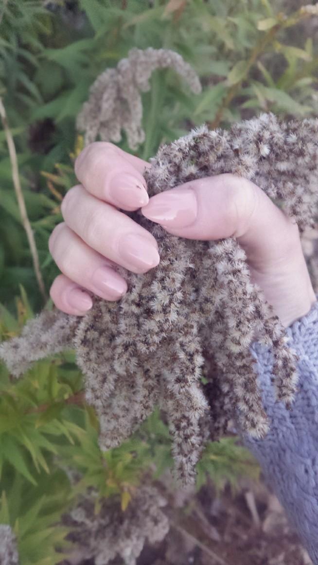 Jesiennie..... Więcej zdjęć na blogu. loveeisweakness.blogspot.com ;-)