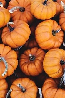 Kto z Was lubi wycinać straszne dynie na Halloween? Przyznaję się, ze tego ni...