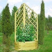 Pergola narożna z drewna
