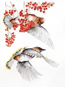 Jemiołuszki - plakat, reprodukcja A3