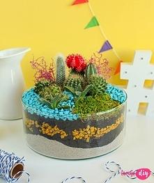 Mini ogródek DIY - zobacz tutorial na twojediy.pl