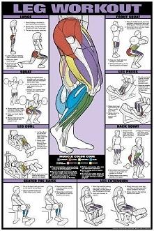 Najlepsze ćwiczenia na nogi women and man