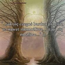 Drzewa...
