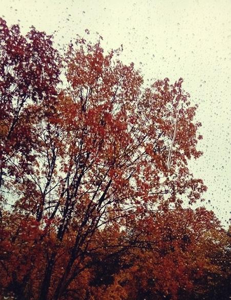 takiej deszczowej jesieni nie lubię!