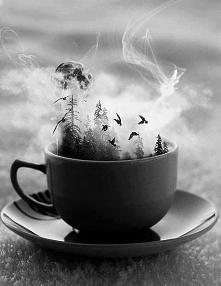 herbata+książka=szczęście <3