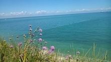 Morze Północne, Wielka Brytania-Margate