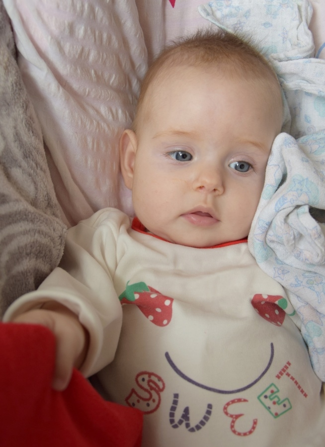 fotografia , fotografia niemowlęca , pasja
