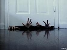 Ręce pod drzwiami to kolejn...