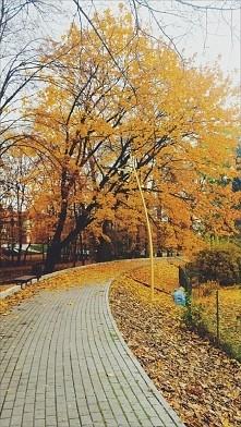 autumn. ..