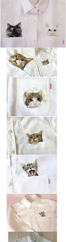 coś dla fanów kotów! ^^