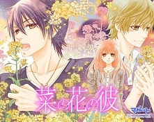 Manga: Nanoka no Kare Przyj...