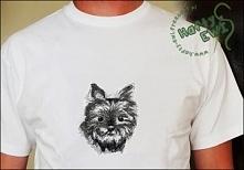 Koszulka z haftem yorka.