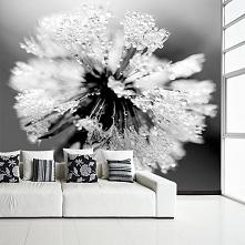 Fototapeta z motywem dmuchawca, doskonała do białych pomieszczeń, nada Twojemu wnętrzu tajemniczości.