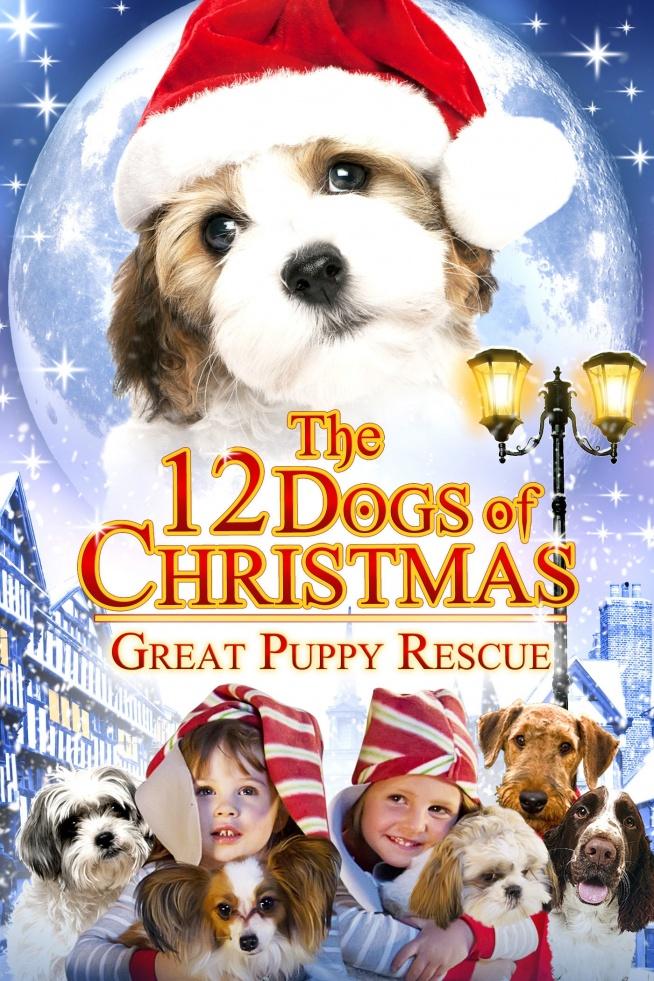 """Wigilijna opowieść o 12 pieskach (2005)  Okres świąt Bożego Narodzenia, lata 30. ubiegłego wieku, Pittsburgh. Dla dwunastoletniej sieroty Emmy jest to ponury czas. Dziewczynka została wysłana na święta do ciotki mieszkającej w Doverville. Nie czuje się u niej mile widzianą. W mieście trwa bój o przeforsowanie zakazu posiadania psów. Z pomocą przyjaciół, paru dorosłych i gromady ponad 60 psów, Emma próbuje przekonać obywateli miasta do czworonogów poprzez wystawienie dla nich przedstawienia pt. """"12 Świątecznych Psów""""."""