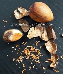 Pestka awokado i jej cudowne właściwości  myownpleasures.blogspot.com