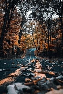 Uwielbiam zdjęcia związane z jesienią :>