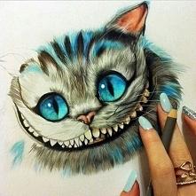 Cheshire cat o.O