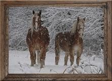 Jak Wam podoba się taki obrazek zimowy. Dębowa woskowana rama pasuje tu ideal...