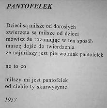 Andrzej Bursa | Pantofelek
