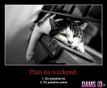 No to już mam plany na weekend xD