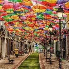 ulica parasoli PORTUGALIA