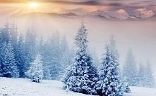 Przepiękna zima
