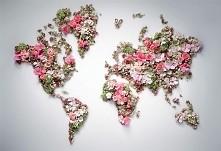 Diy- mapa z kwiatów *-*