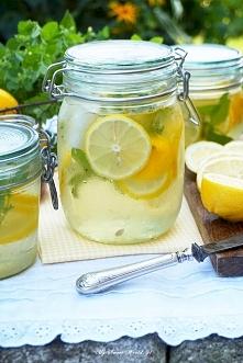Składniki na około 2 litry napoju:  1-2 cytryny                            3-4 dorodne gałązki melisy + kilka mniejszych  1 gałązka mięty cytrynowej  kilka łyżek miodu z mniszka...