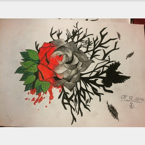 """Róża, mam nadzieję ze wam się podoba dawajcie znać w komentarzach i zachęcam do dowiedz Ania strony na fb """" rysynkkii"""""""