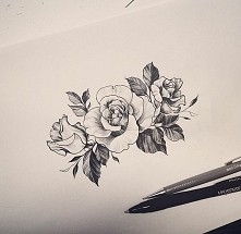 #róże