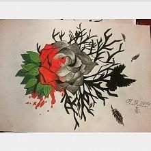 Róża, mam nadzieję ze wam s...