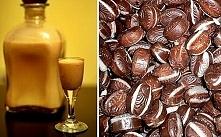 LIKIER KUKUŁKA ♥♥♥ Dziewczyński TRUNEK na święta!!! Czas już zalać żeby się przeżarło :) Składniki • szklanka wódki, • puszka mleka skondensowanego niesłodzonego, • 120 g kukułe...