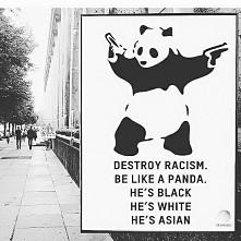 #panda#rasizm#destroy_racism