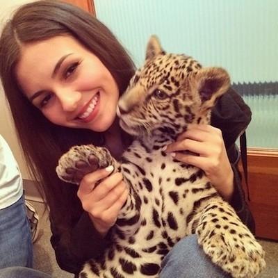 #animal #girl