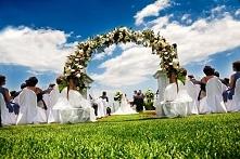 I do wedding professional software