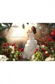 Alfred Angelo Wedding Dresses Style 225 Belle