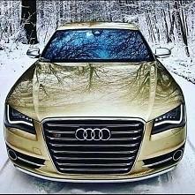 Audi S8 :)
