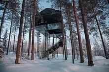 domek na drzewie hotel