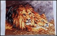 """""""Odpoczywające lwy&quo..."""