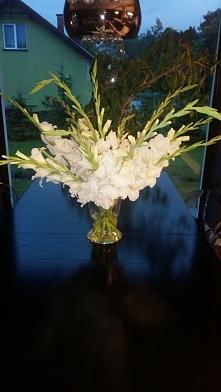 białe kwiaty z mojego ogródka...