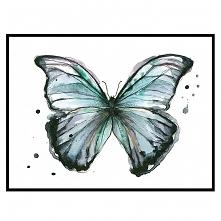 Motyl II, 21x30 cm, A4