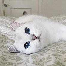 Te oczy *_*