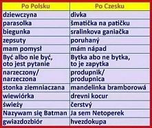 divka :)