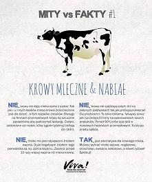 Parę faktów na temat mleka....