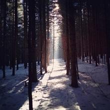Czasem życie bardzo jasno pokazuje Ci w którą stronę masz iść...