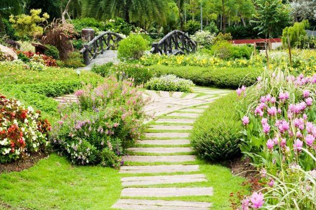 4 Pożyteczne Owady Które Pomogą Ci Zadbać O Twój Ogród Na